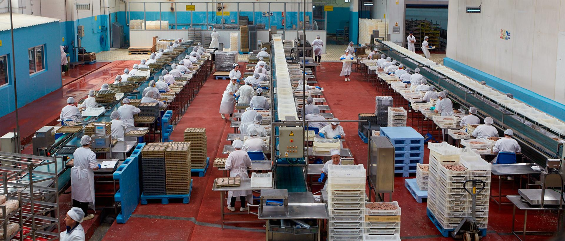 26.000 m2 FACTORIA + LOGISTICA